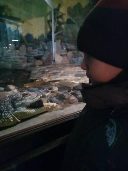 Казанский зоопарк!